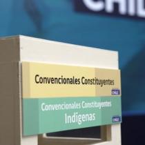 El Reglamento de la Convención y la sustentabilidad futura de la nueva Constitución