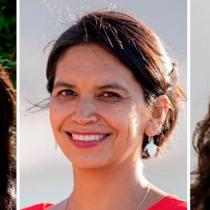Alondra Carrillo, Cristina Dorador y Virginia Palma Erpel: los perfiles feministas en la nueva política