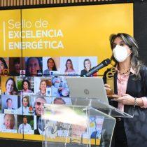"""Enel X recibe premio de excelencia energética en """"Transporte Eficiente y Electromovilidad"""""""