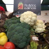 Lanzan aplicación para comprar frutas y verduras de ferias libres a domicilio