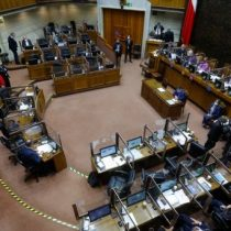 Comisión de Constitución discutió sobre nominación de María Teresa Letelier a la Corte Suprema