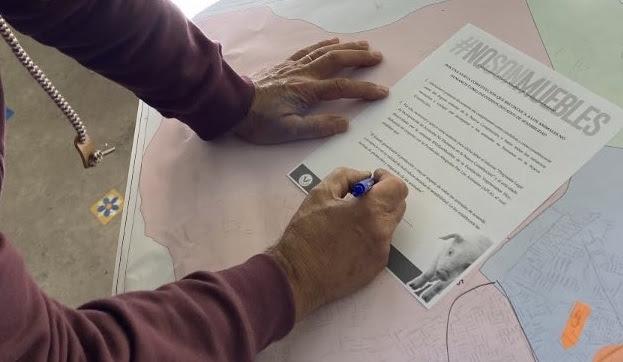 Más de 450 candidaturas apoyan una Constitución Animalista
