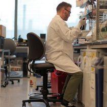 Alzhéimer: Estados Unidos aprueba Aduhelm, el primer medicamento contra el mal en 20 años
