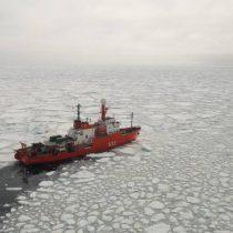 Antártica y política exterior: Pasos de borracho