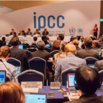 Tal como la pandemia, cambio climático no da tregua: informe mundial de grupos de expertos advierte reducción en la disponibilidad de agua y comida