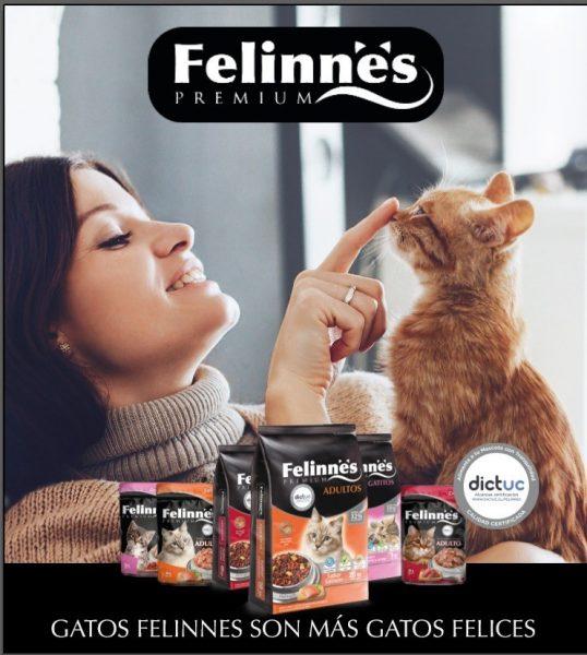 Felinnes da a conocer innovadora línea de alimentos para gatos certificada y con exquisitas croquetas rellenas