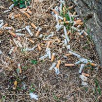Las colillas son un residuo tóxico: ¿por qué no las gestionamos como tal?