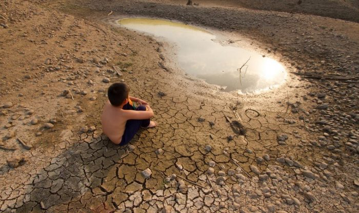 El papel de la naturaleza para combatir la desertificación y la sequía