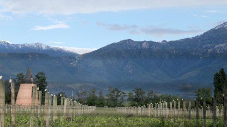 Piedra Sagrada: La historia de un Cabernet Sauvignon que homenajea el sueño de un padre