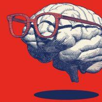 7 ½ mitos sobre el cerebro desmontados