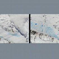 Es oficial: agencia de la ONU confirma récord de calor en la Antártida con 18,3 ºC