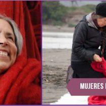Cecilia Vicuña, nominada al Premio Nacional de Artes: una artista comprometida con los derechos de la mujer y en contra de la destrucción ecológica