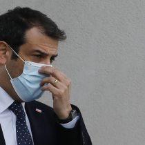 """Ministro Delgado condenó declaraciones de Fabiola Campillai: """"No son propias de una democracia"""""""