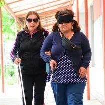 Convención Constitucional: qué esperan las personas con discapacidad