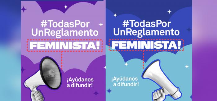 «Todas por un reglamento feminista para la Convención»