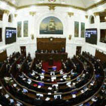 Constituyente Ruth Hurtado propuso creación de comisiónde Derechos Humanos y Reparación
