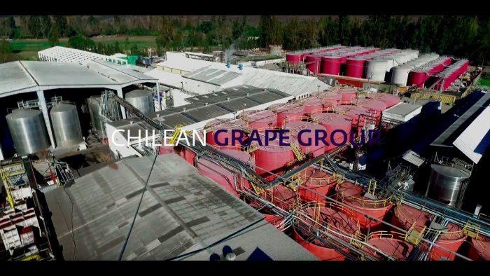 Algo huele mal en la viña Lourdes del Grupo Yarur: hedores inundan Isla de Maipo por riles sin tratar