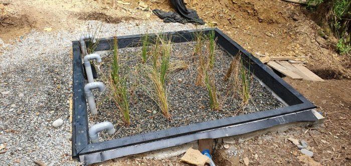Construir humedales: Una solución basada en la naturaleza para combatir el cambio climático y la crisis hídrica