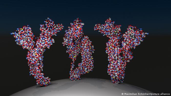 ¿Cuántos anticuerpos son necesarios para ser inmune al coronavirus?