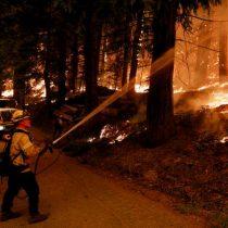Incendios en California han arrasado con 72 mil hectáreas y se han evacuado más de 22 mil personas