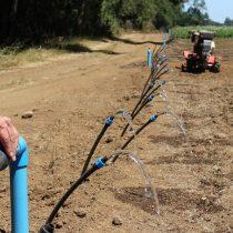 Prórroga a la Ley de Riego: subsidios para seguir exportando agua en plena crisis climática