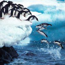 Informe IPCC: La subida del nivel del mar y el deshielo de los glaciares ya son irreversibles, pero podemosfrenarlos
