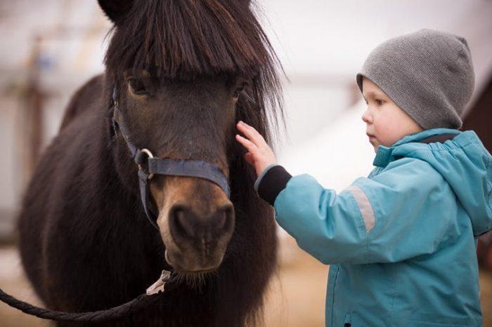 Las terapias asistidas con animales para personas con TEA: evidencias científicas y retos