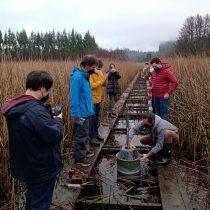"""Crean """"robot"""" que medirá indicadores de agua en humedales"""