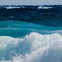 El mar en la nueva Constitución