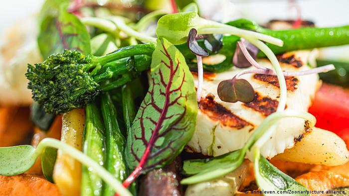 Estudio demuestra los beneficios de una dieta rica en plantas en el funcionamiento intestinal por los gases