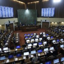 Diputados UDI llaman a parlamentarios a «aprobar por unanimidad» ley corta de pensiones