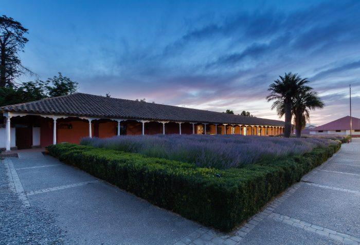 Santa Rita es elegida entre las mejores viñas del mundo para visitar