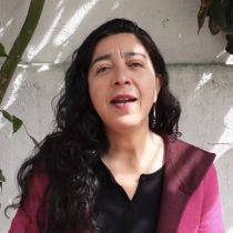 """La teleserie de Tania Madriaga: convencional no reemplazará como vicepresidenta adjunta a Rojas Vade y acusa """"error político"""""""