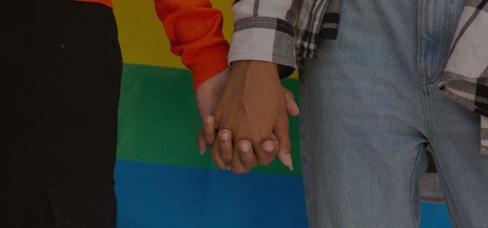 La violencia contra grupos LGBTI dejó 689 muertes en América en 2019 y 2020