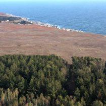 Demanda por compra de terrenos en Chile creció 83% durante el primer semestre