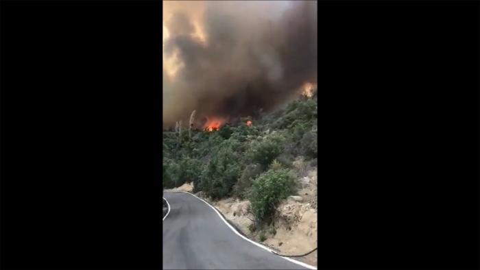 Incendio forestal en Tiltil: declaran alerta roja por siniestro que afecta a más de 100 hectáreas y ha quemado al menos 12 casas