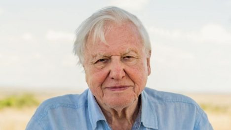 La advertencia de David Attenborough antes de que sea