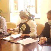 INDH prestará asesoría técnica y elaborará informes para la Convención Constitucional