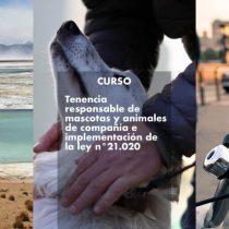 Abre convocatoria para cursos de diseño urbano, turismo local y tenencia responsable de mascotas