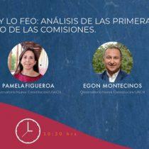 Lo bueno, lo malo y lo feo: webinar del Observatorio Nueva Constitución analizará el inicio del trabajo de las comisiones de la Convención